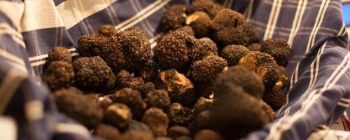 Basket of White Truffles